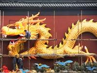 דרקון סין אסיה / צלם:  רויטרס
